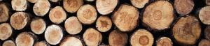 Myllyn Mies Oy - Puukauppa - Ostetaan puuta